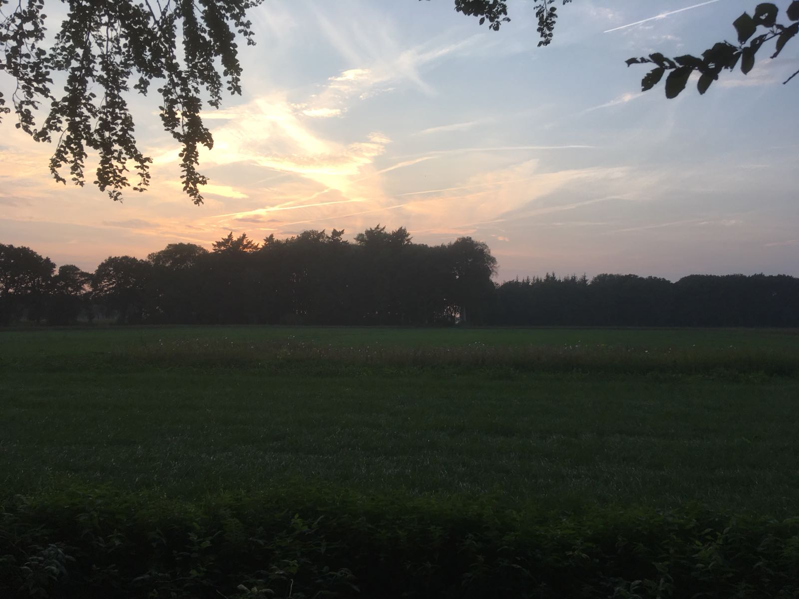 Nazomeren in Drenthe